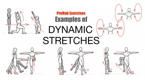 flexibledynamicstretching02